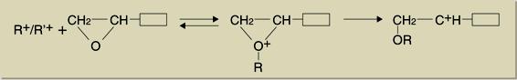 mchanism-1